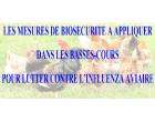 Influenza aviaire H5N8